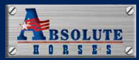 Absolute Steel Logo